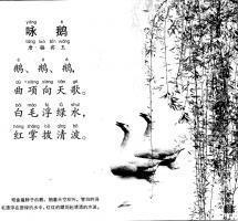 白毛浮绿水,红掌拨清波 骆宾王 咏鹅 意思翻译赏析